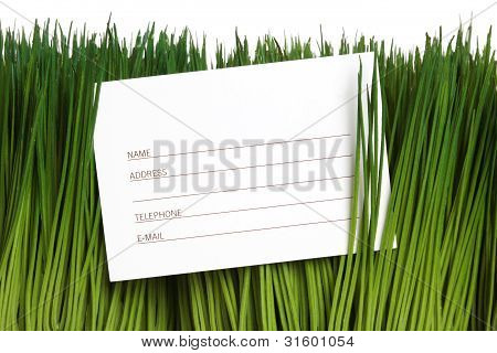 Address Book And Green Grass