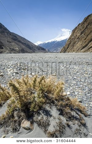 Empty Riverbed In Himalaya Mountains