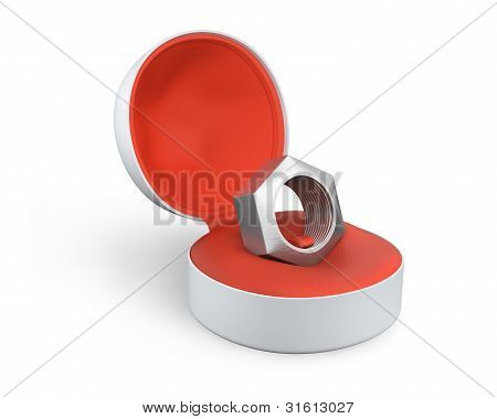 Silver Female Screw In A White Ring Box