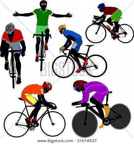 Bicyclis