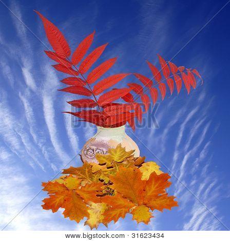 The Autumn Sky.