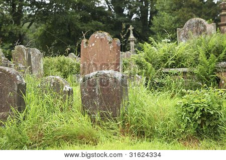 Tombstones In Grass