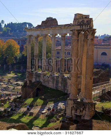 The Forum, Rome