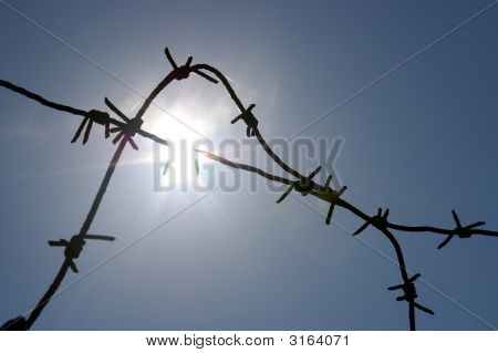 The Barbed Wire And Solar Glare.