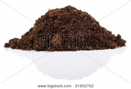 Pile Of Soil For Plant