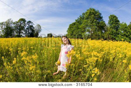 Mädchen In einem Blumenfeld