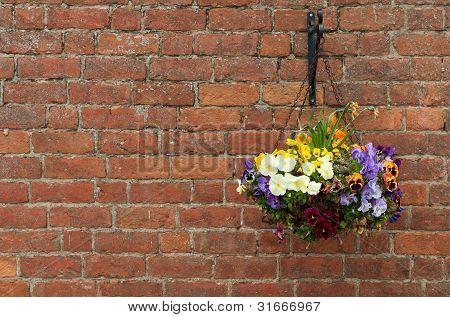 Hanging Flowers Pot