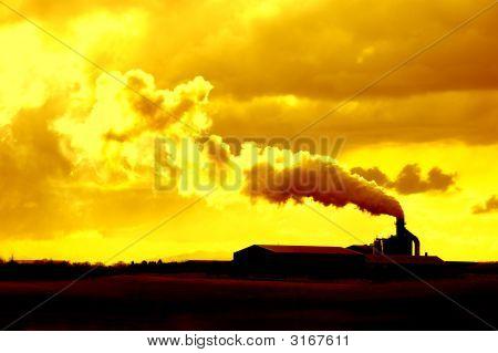 Environmental Hazard