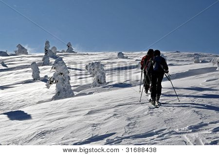 Back country skier (ski touring), walking up to a snowed mountain