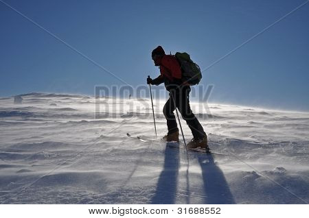 Back country skier