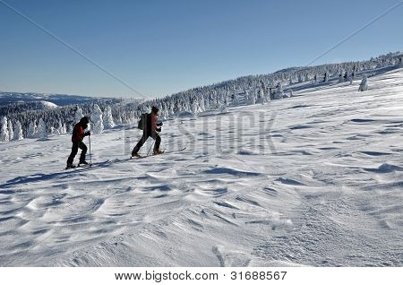 Back country skiers