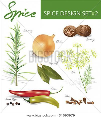 Spice images design set 2. Vector illustration.