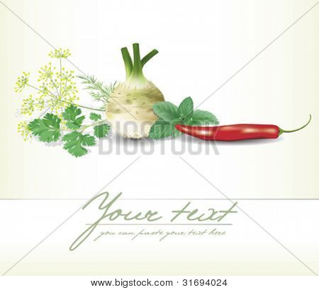 Design template with herbs and vegetables composition. Vector illustration.