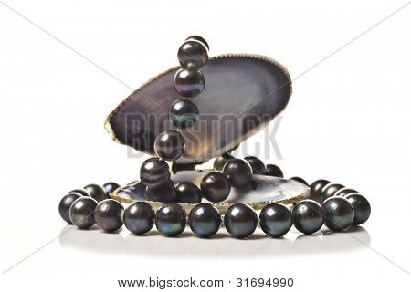 String of black pearls in a sea shell on white