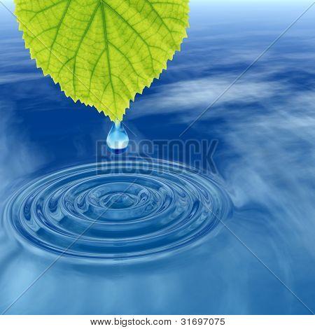 hohe Auflösung konzeptionelle Wasser oder Tau Tropfen fallen von einem frischen grünen Blatt auf einer klaren blauen Wasser m