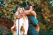 Fashionable Ladies Wearing Fur Style Clothing For Outside. Autumn Fashion Trend. Fashion Outdoor Pho poster