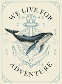 Vector Banner With Hand-drawn Whale On The Background Of Compass And Anchor In Retro Style. Illustra poster