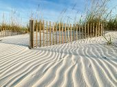 Sand Fences In Pristine Sand Dunes With Clear Wind Patterns In The Sand. Good Background Photo. poster