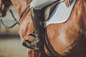 Horse Riding Stirrups And Shoes. Equestrian Accessories And Equipment. Closeup Photo. poster