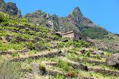 Tranquillity Isolated House On Mountains With Stone Walls In Tenerife. poster