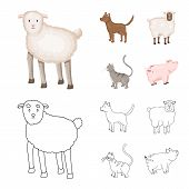 Vector Illustration Of Breeding And Kitchen Symbol. Collection Of Breeding And Organic Stock Vector  poster