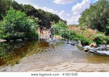 Cyclists on the bicycle trail