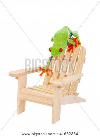 Tropical Vacation Frog