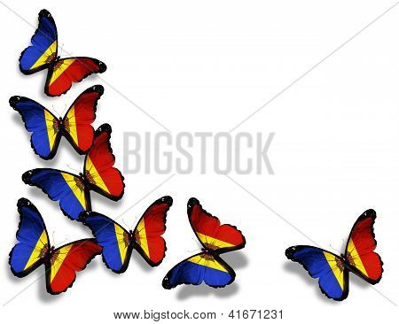 Moldavian Flag Butterflies, Isolated On White Background