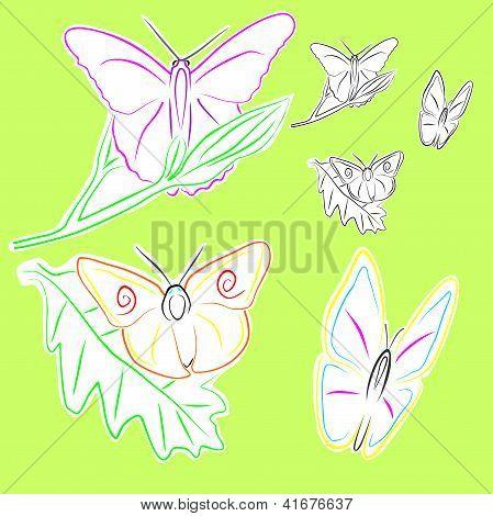 Butterflies Assembly