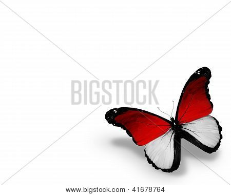 Monegasque Flag Butterfly, Isolated On White Background