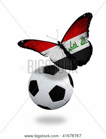 Concept - Butterfly With Iraqi Flag Flying Near The Ball, Like Football Team Playing