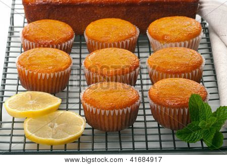 Citrus cupcakes with lemon glaze