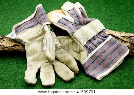 Working Gloves with Tree Trunk