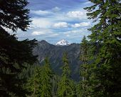View Of Glacier Peak (far Perspective) poster