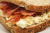 Bacon and egg mayonnaise sandwich with wholegrain bread.
