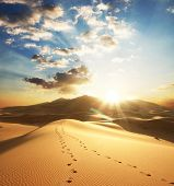 picture of sahara desert  - view of the Sahara desert in the sunny day
