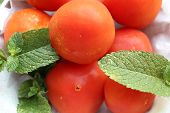 foto of regrouping  - closeup of a group of tomatoes with leaves - JPG