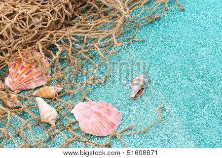 Sea shells and fish net