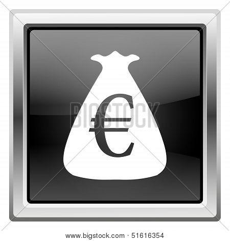 Euro Sack Icon