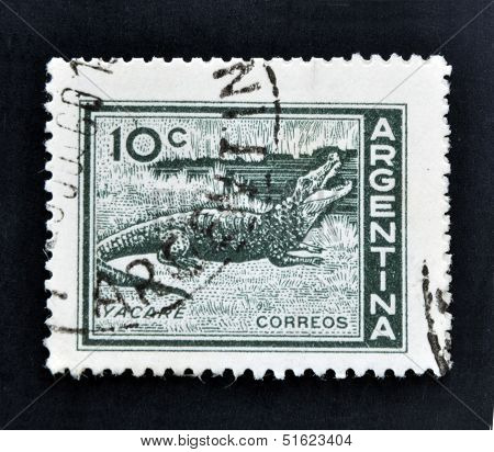 a stamp printed in Argentina shows Caiman Caiman Yacare
