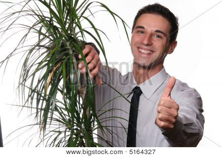 Young Professional Man With A Plant