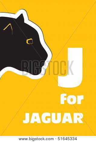 J For The Jaguar, An Animal Alphabet For The Kids