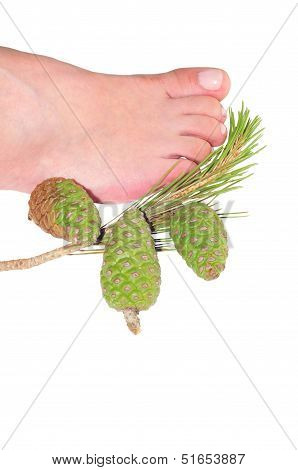 First Plane Of Foot Of Woman Next To A Pineapple Of Pine Pi�onero