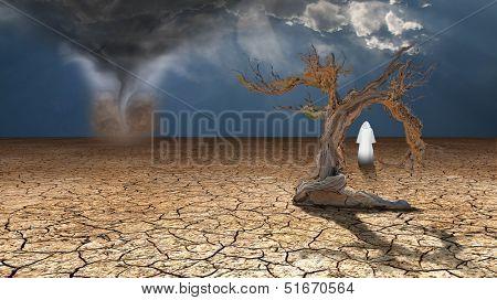 Holy Wanderer on dried desert mud faces desert dust devil