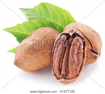 Pecan nuts with leaves isolated on a white background.