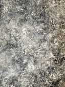 foto of dapple-grey  - Grungy background - JPG