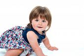 picture of crawling  - Cute litle baby girl crawling isolated on white - JPG