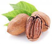 stock photo of pecan  - Pecan nuts with leaves isolated on a white background - JPG