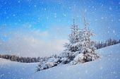 picture of snowy hill  - Snow - JPG