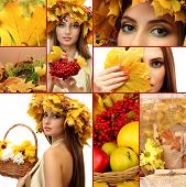stock photo of face-fungus  - Collage of beautiful autumn - JPG